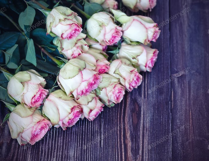 Tender roses on dark recycled wood background
