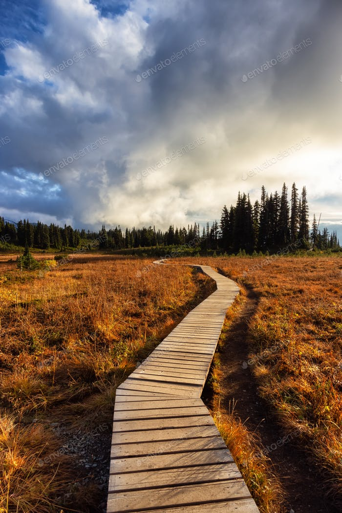 Hiking trail outdoors in Canadian nature