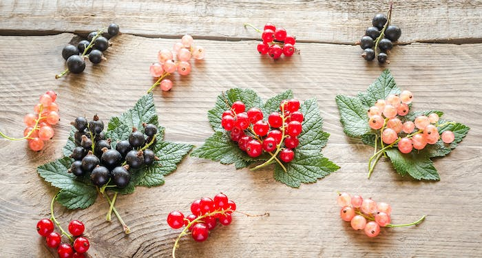 Fresh currant on leaves on the wooden board