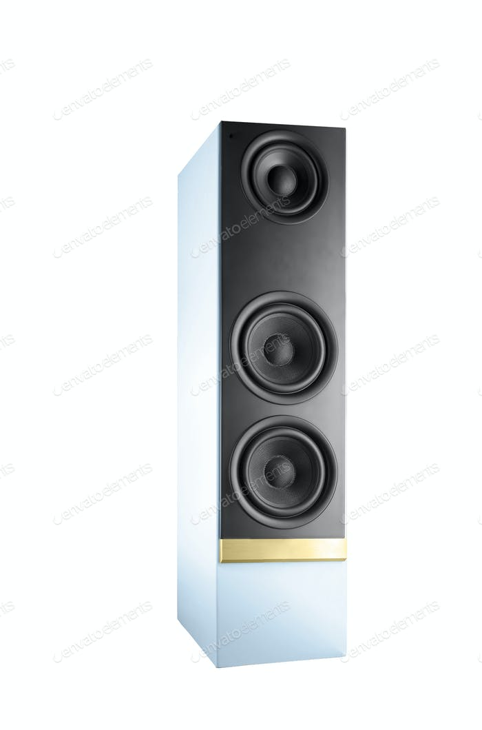 Big speaker isolated on white