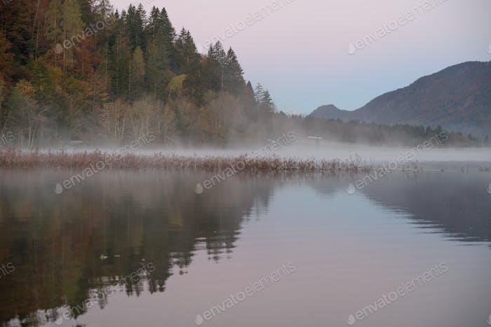 Morgenreflexionen am See