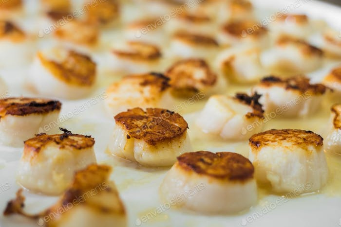 Tasty cooked�scallops on pan