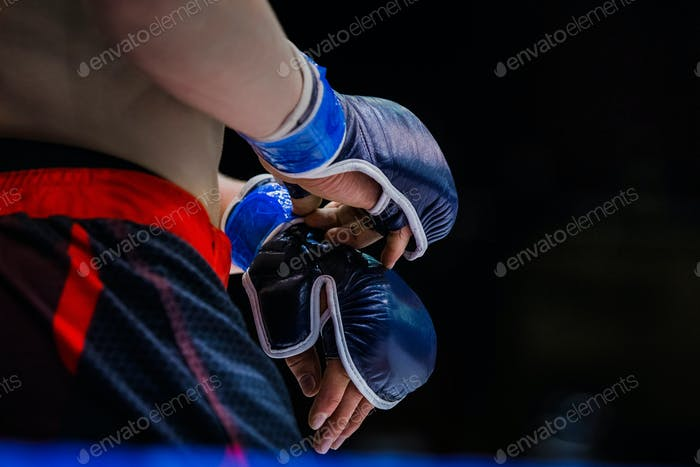 closeup gloves boxer