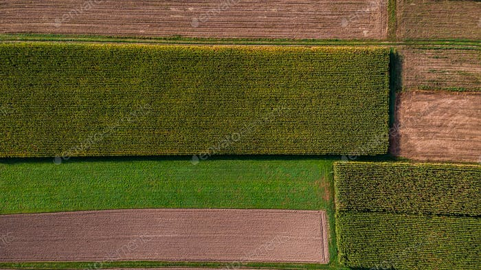 Colorful Pattern of Farming Fields. Top Down Aerial Drone View