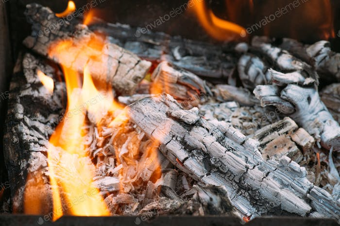 close up of bonfire with flame and firewood