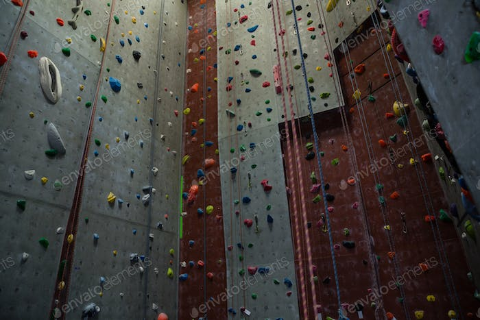 Ropes hanging by climbing wall in gym
