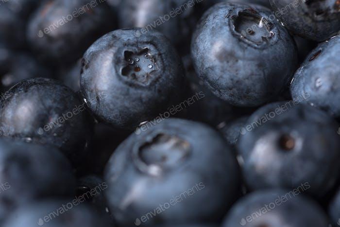 Fresh ripe perfect blueberries. Macro.