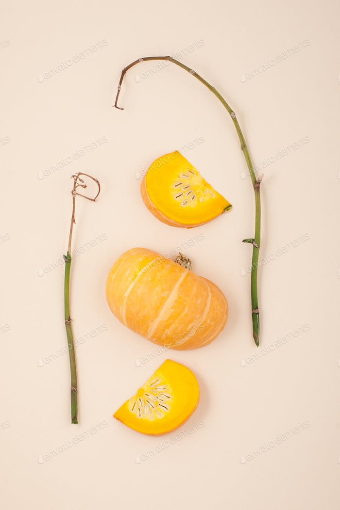 Fresh orange cut pumpkin and dried branches on a light beige pas