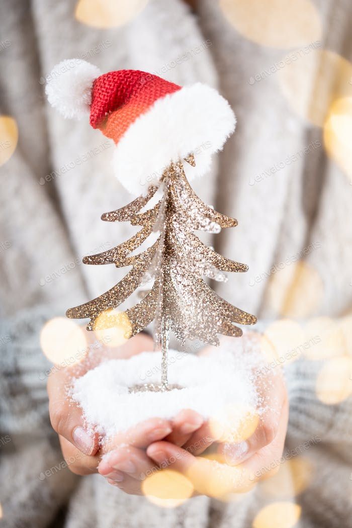 Winter Concept Young Hands Holding christmas decor.