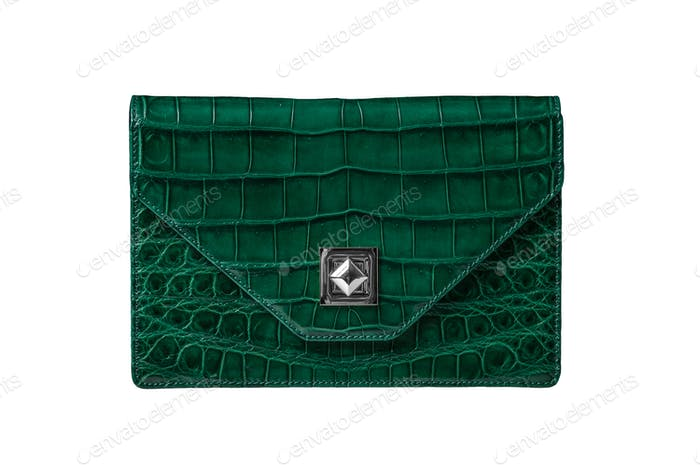 Leather handbag from alligator skin isolated
