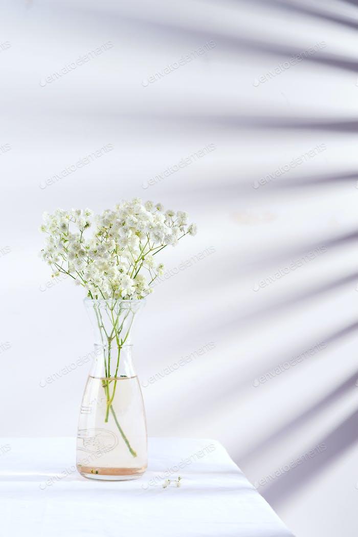 Frische Blume Zweige von Gypsophila Pflanze in Glasvase auf einem Tisch bedeckt Textiltuch gegen die Wand