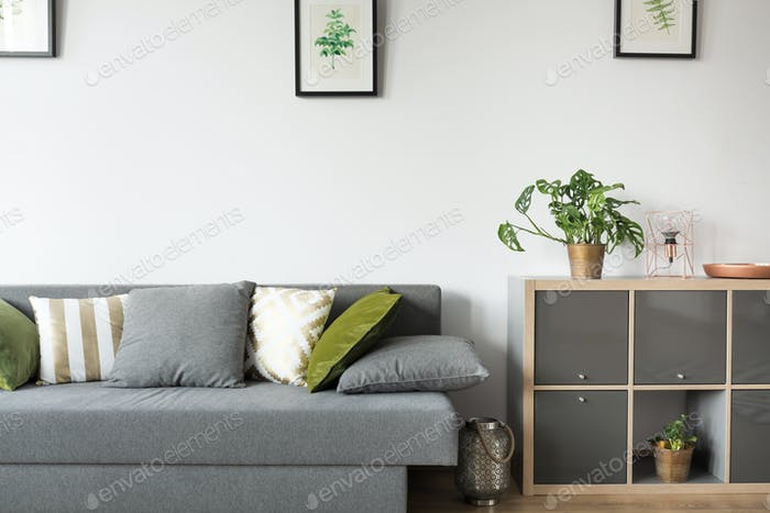Room with sofa and rack