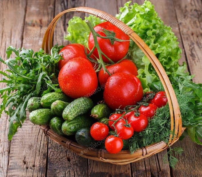 Frisch geerntete Bio-Gemüse in einem Korb.T