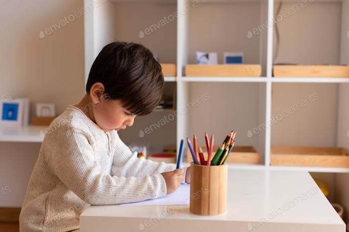 Preschooler kid drawing with coloured pencils. Homeschooling. Learning community. Montessori school.