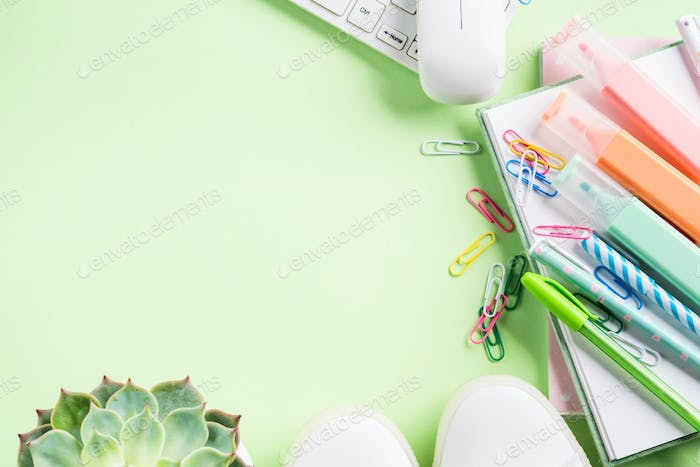 Green back to school flat lay with copy space