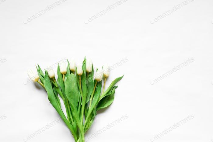 Draufsicht der weißen Tulpen