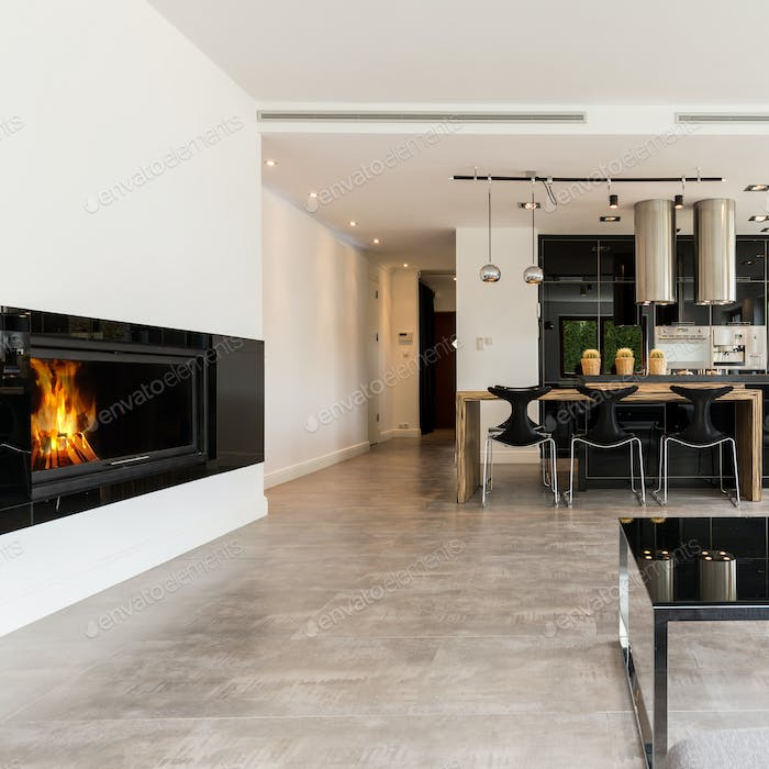 Spacious interior with fireplace and open kitchen
