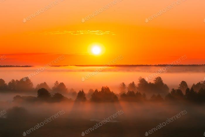 Amazing Sunrise Over Misty Landscape. Scenic View Of Foggy Morni