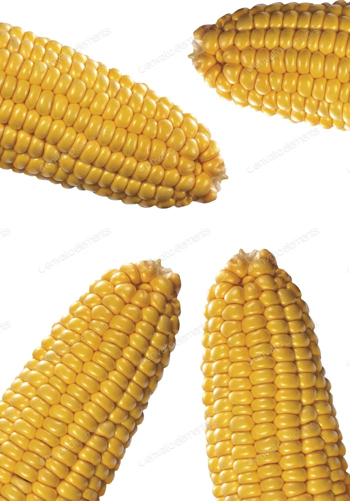 corns isolated