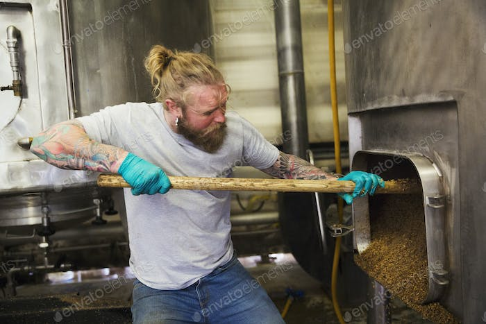 Man raking spent grain from a large kettle or mash pan in a brewery.