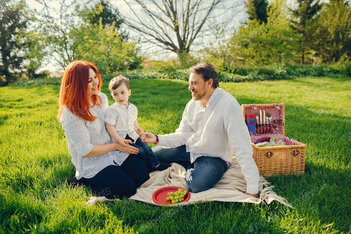 lindo familia sentado en un soleado Parque
