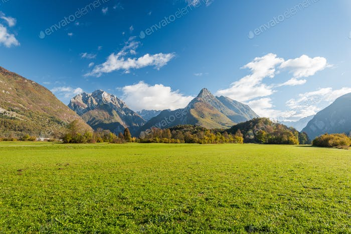 Vibrant green meadow and high Alps in Slovenia
