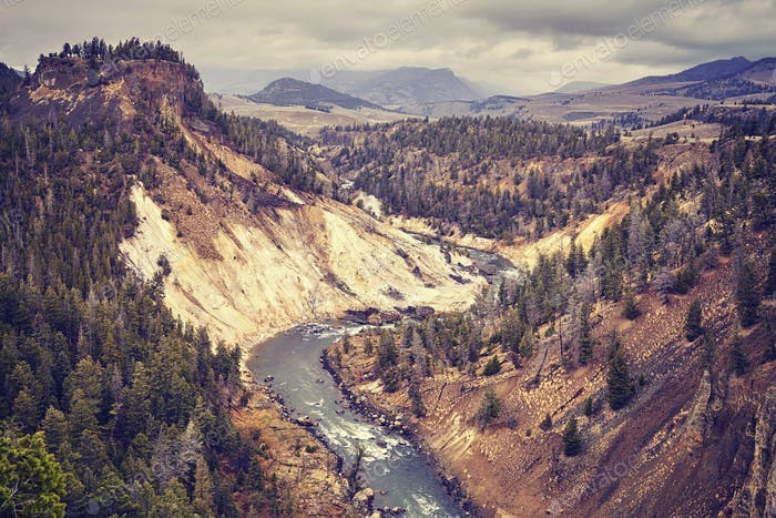 Vintage toned canyon in Yellowstone National Park, USA.