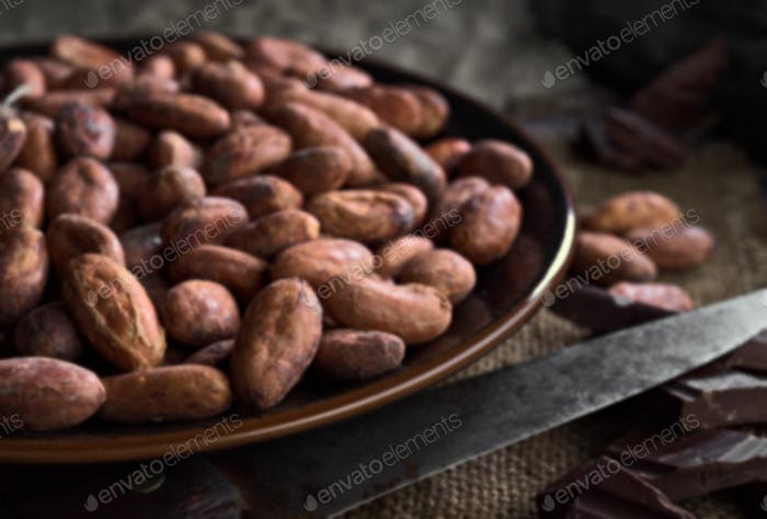 cocoa seeds in porcelain dish