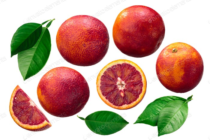 Blood oranges c. x sinensis, paths