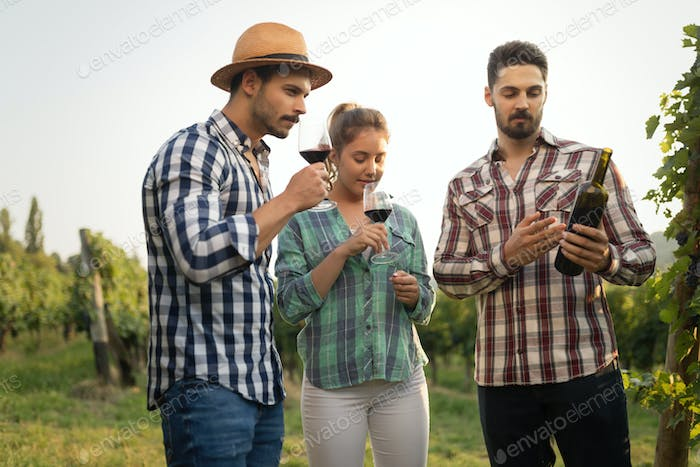 People tasting wine in vineyard