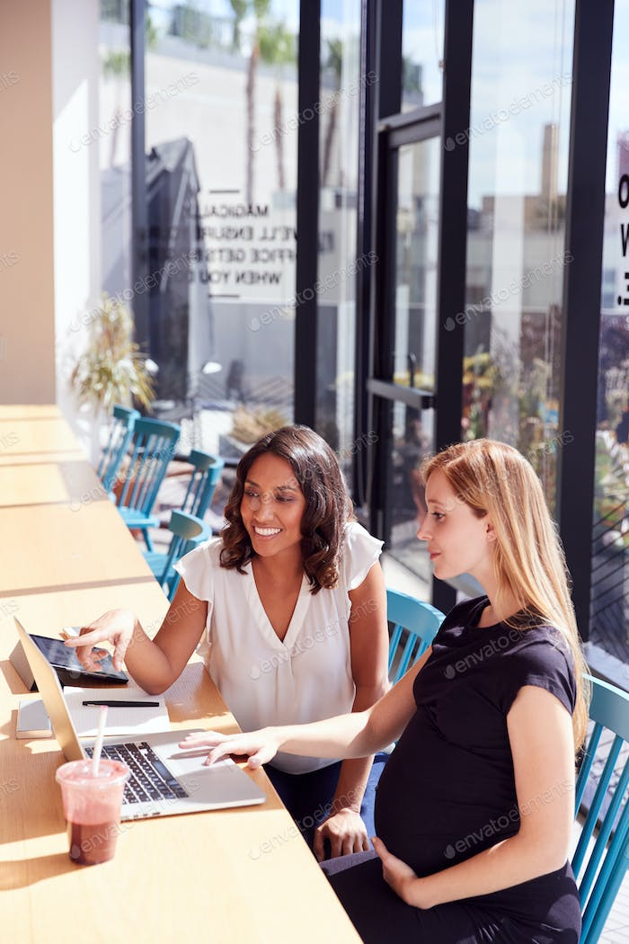 Businesswoman Using Laptop Working With Pregnant Female Colleague In Modern Office