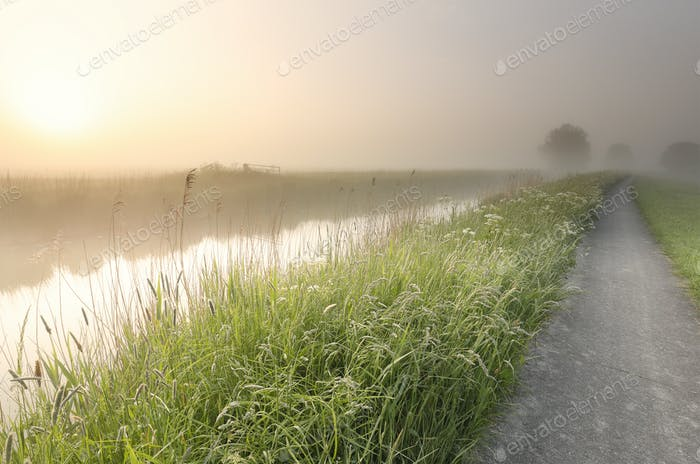 beautiful misty summer morning along river