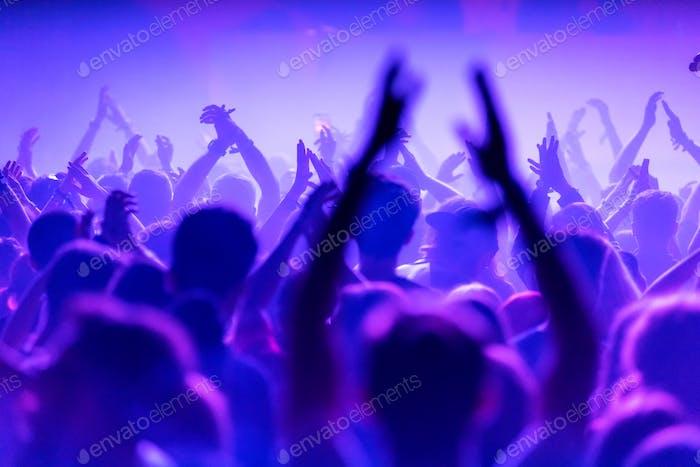 Rückansicht der Menschenmenge bei Live-Konzert