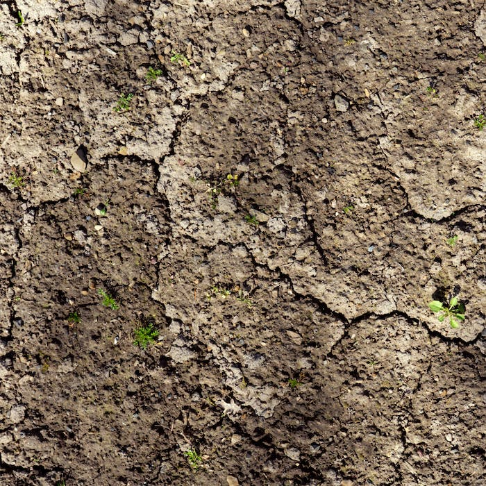 Brown dry soil background