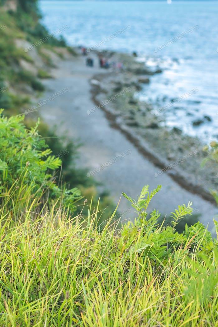 Baltic coastline. Escarpment slope lead to pebble beach. Baltic sea bay. Luebeck - Travemuende
