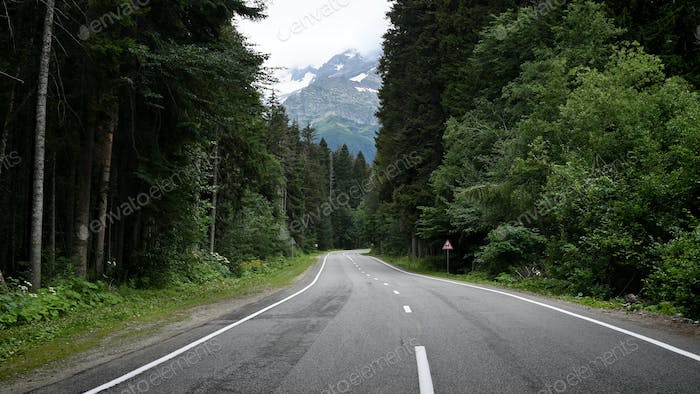 Empty road in mountain forest