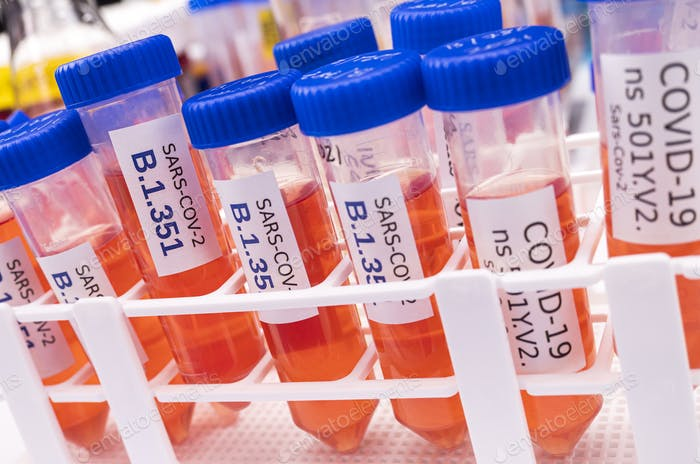 Laboratory research new strain of South Africa sars-cov-2
