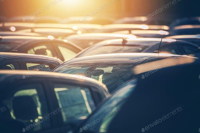Autohaus Lot voller Autos