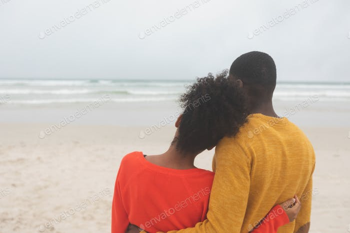 Rear view of romantic Multi-ethnic couple standing at beach on a sunny day. Woman leaning on man