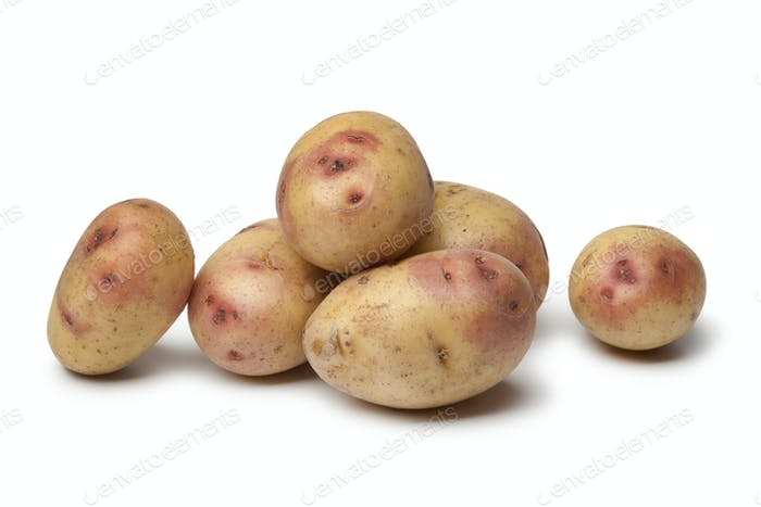 Fresh Carolus potatoes