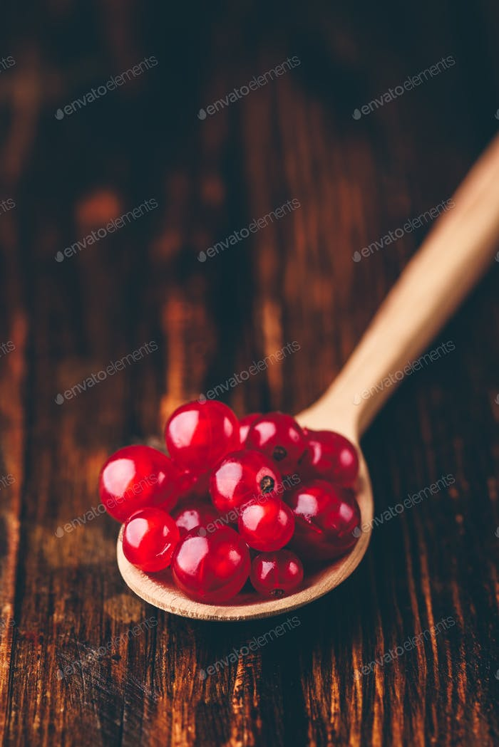 Spoonful of red currant