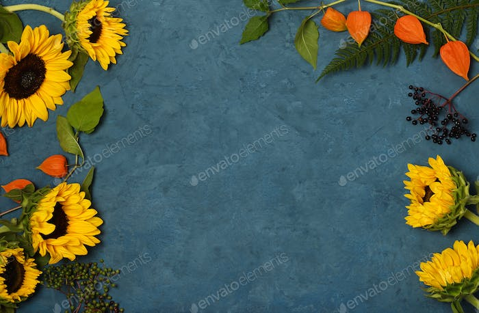 Frame of sunflowers