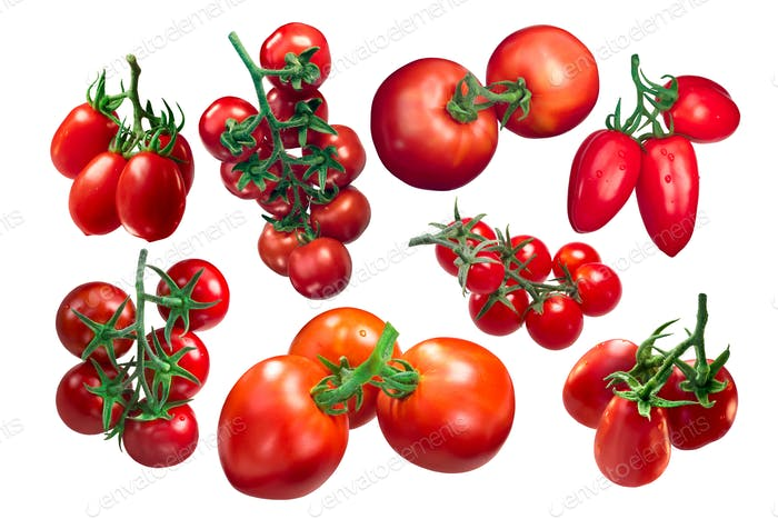 Tomatoes on the vine, clusters, paths