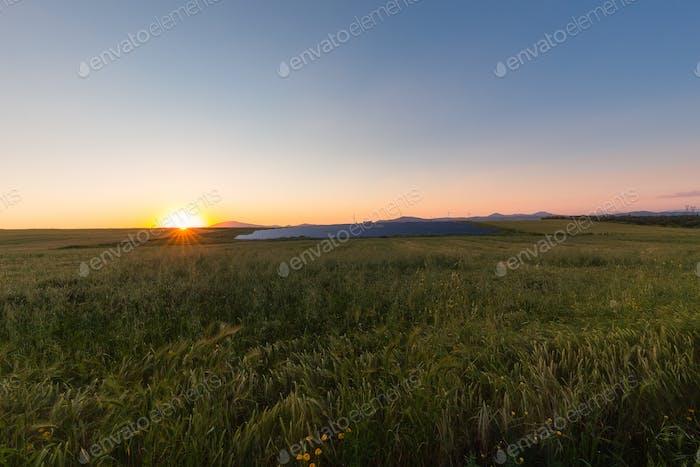 Solar Panels In Sunset
