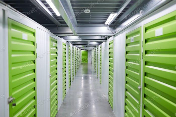 Grüne Aufbewahrungsboxen