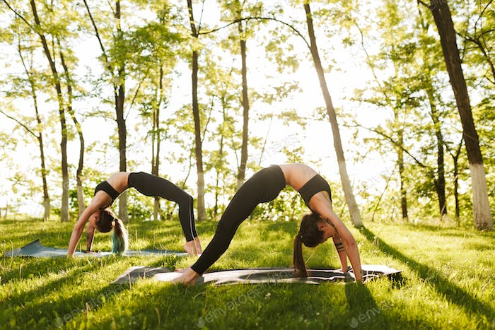 Photo of young ladies standing in bridge poses while training yoga together outdoors