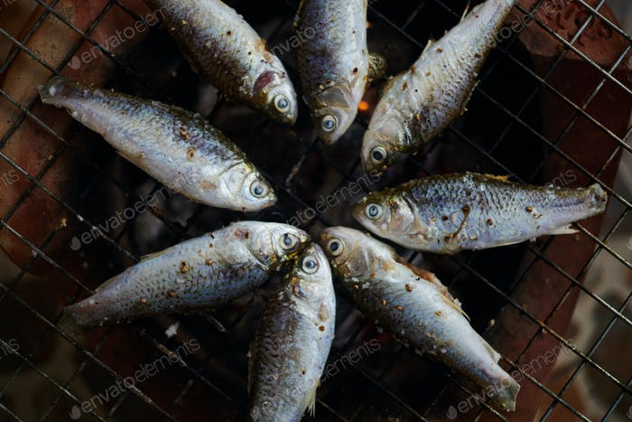 Frischer Fisch auf Gitter