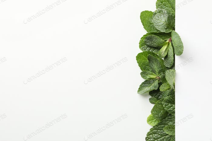 Fresh mint on white background, space for text