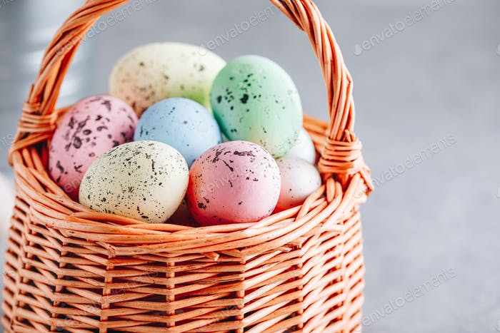 Colorful Easter eggs closeup in the basket on gray stone concrete background