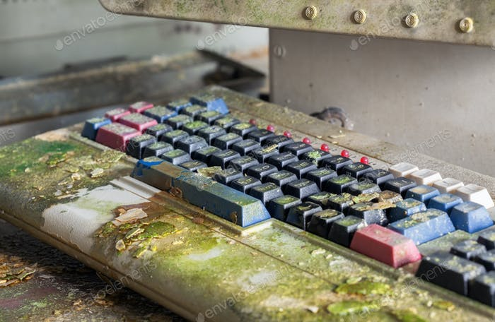 Retro computer keyboard covered with moss